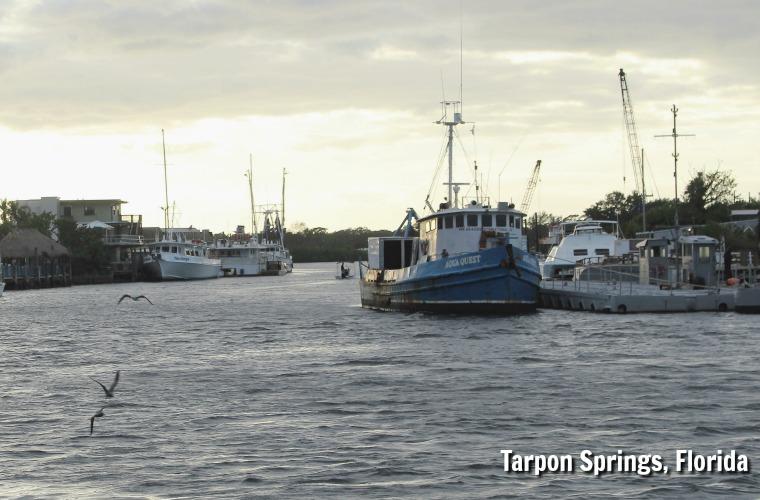 Tarpon Springs Florida near Hickory Point RV Park