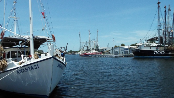 Boats at the Sponge Docks Tarpon Springs